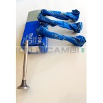 Exhaust Valves Fiat 600 D