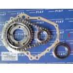 Gruppo ingranaggi , catena, paraolio distribuzione Fiat 500 F l d r